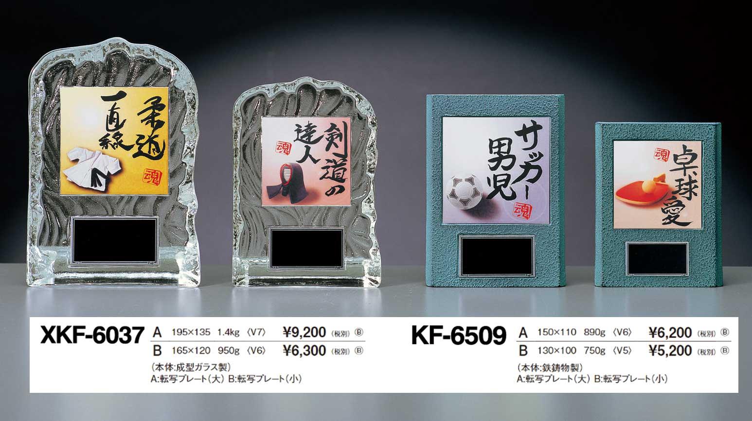 XKF6037、XF6509