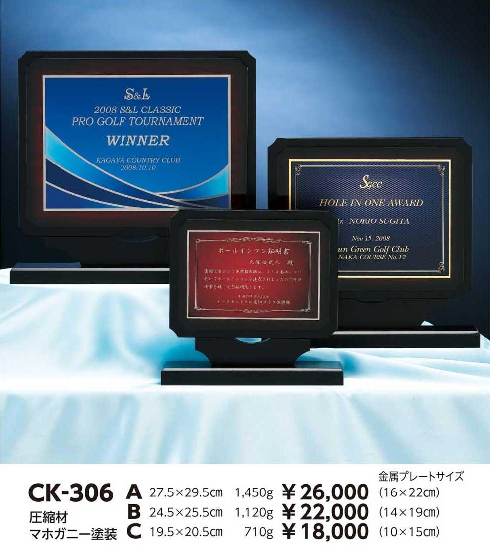 CK306