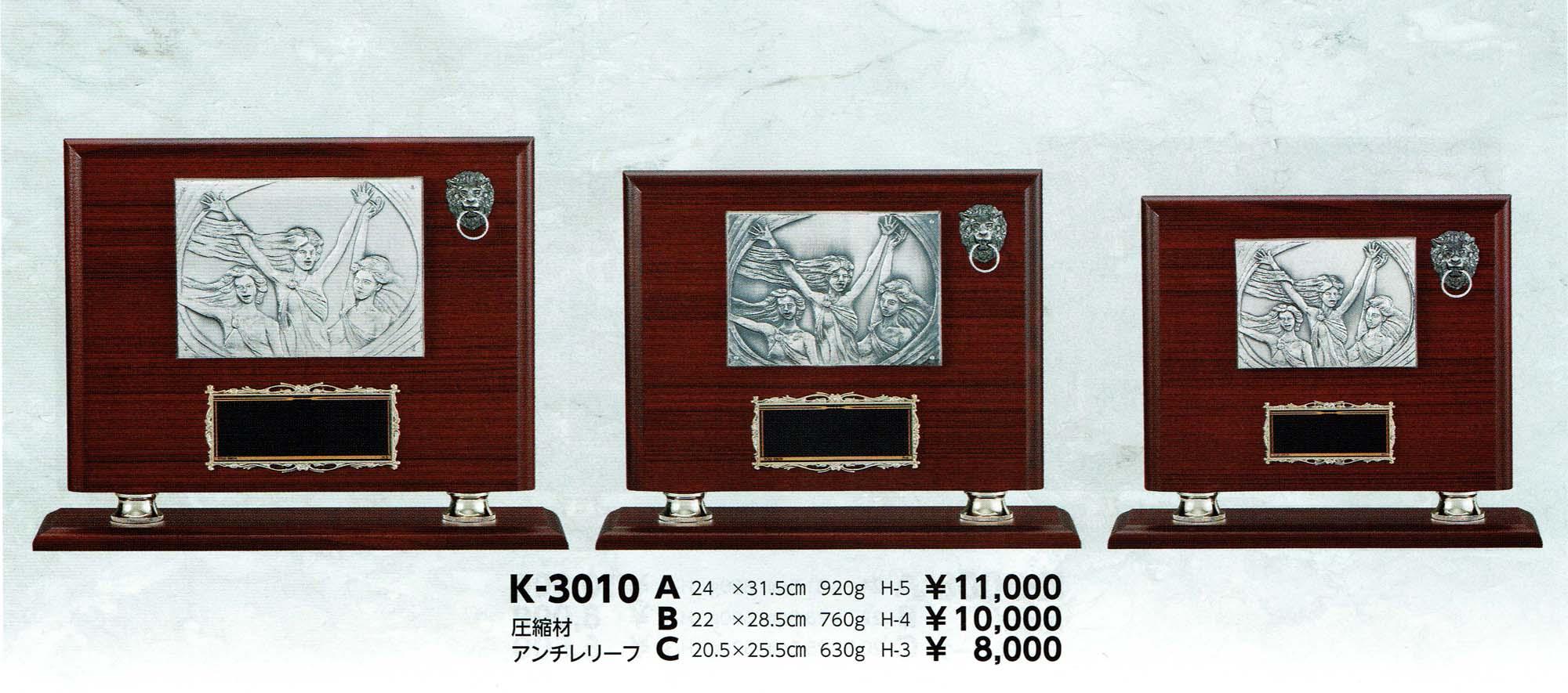 K3010
