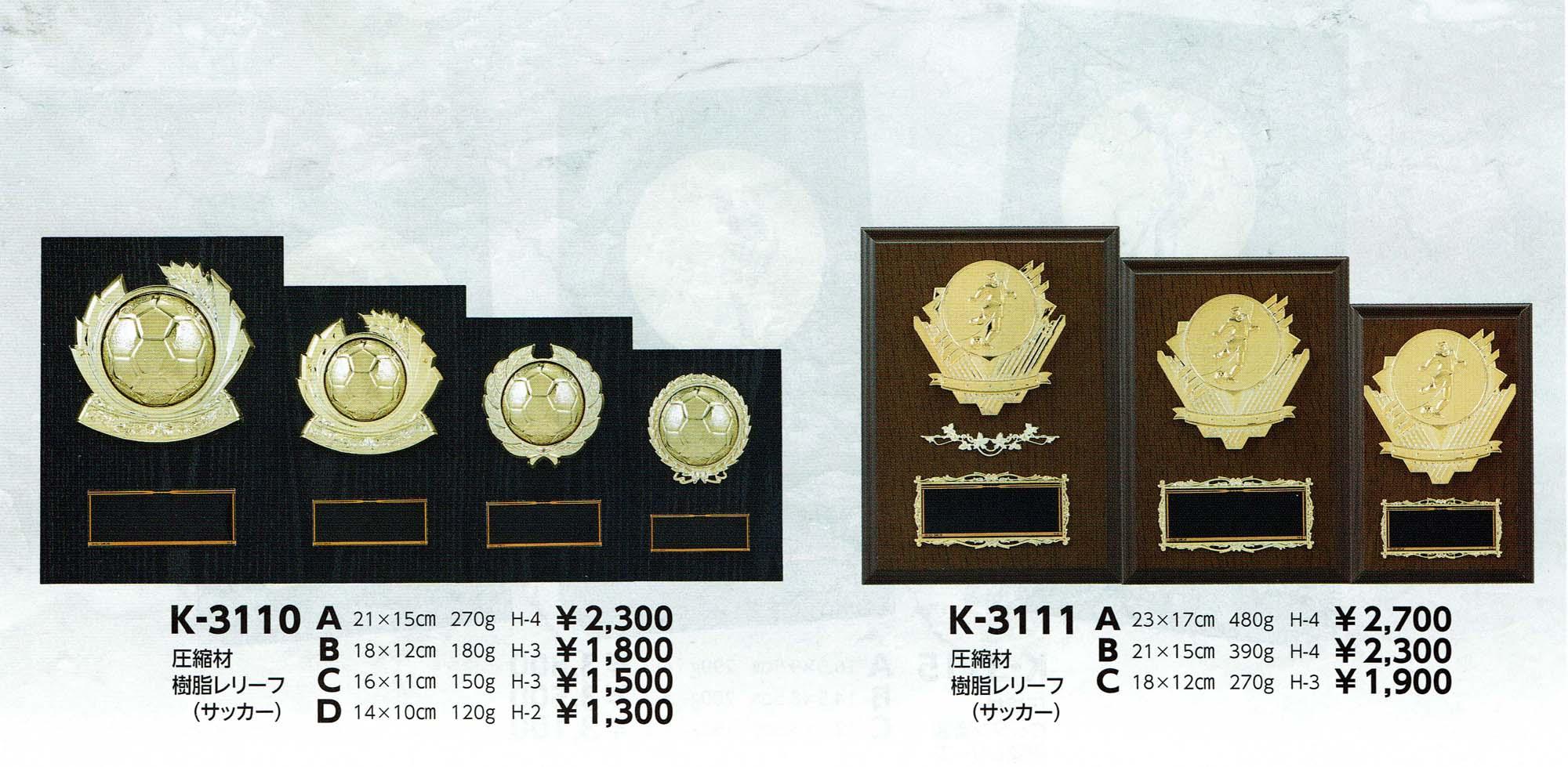 K3110、K3111