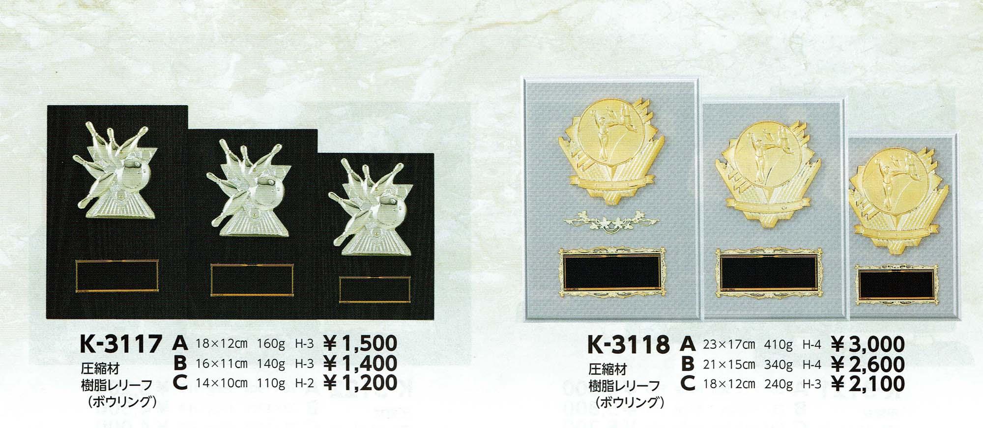 K3117、K3118